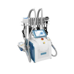 جيّدة 360 [كروليبولسس] سمين يجمّد تردّد لاسلكيّ فوق سمعيّ [كفي] [ليبو] آلة لأنّ عمليّة بيع