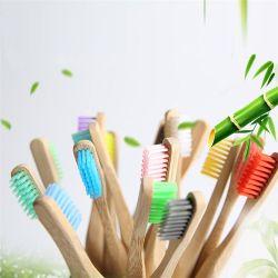 حزمة فراشي الخيزران ذات شعيرات عضوية ناعمة متوسطة الحجم وودية على Ecocococodesly العناية بالأسنان الطبيعية مقبض خشبي بلاستيكي حر و خضروات متعدد الألوان