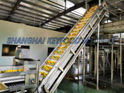 Выжмите сок из производственной линии фруктовые соки производства механизма обработки