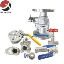 ANSI/DIN/JIS standaardIjzer/Staal/Messing, Flens/Draad, Al Bal van de Grootte/Hydraulisch/Controle/Controle/Vlinder/Vernauwing/Diafragma/Poort/Bol/Water/Gas/Naald/Klep van de Veiligheid