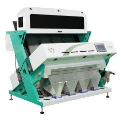 Fabricante diretamente por grosso amplamente utilizada máquina Classificador de cor dos grãos de café