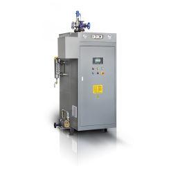 Caldera de vapor eléctrico Copmpact vertical (LDR (100-500kg/h)).