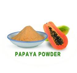 Secado Natural de grado alimenticio en polvo de papaya