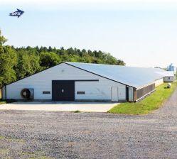 Materiaal Bouw stalen Hanger Garage geprefabriceerde Farm Warehouse Workshop Building Shed Chicken Broiler Poultry House Steel Structure Animal Cages