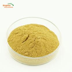 Natürliches Aloevera-Auszug-Puder