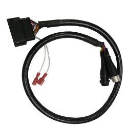 Au cours de la moisissure connecteur M12 Les câbles de puissance
