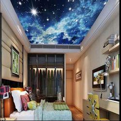 O limite máximo de parede decorativos Mural Design Sky