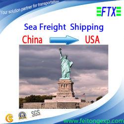 DDP Mer Cargo de Shenzhen/Shanghai/Guangzhou à Austin USA