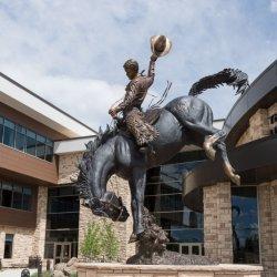 황동 사나이 뒷다리로 청동 말을 타고 있는 조각품 Yard를 위한 동상 모으는 중