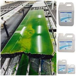 Los rayos UV de alto brillo resistente a la capa superior de Epoxy Kit 1 Gal.