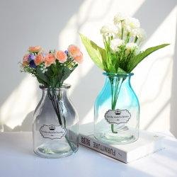 Pequena Casa Jacinto Hidroponia decorativas Recipiente de vidro de Flores vaso de vidro