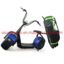 2 de Elektrische Kar van het Golf Seater/Golf Met fouten voor Verkoop