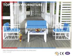Удобный диван ротанга столовая садовой мебелью для отдыха (TG-064)