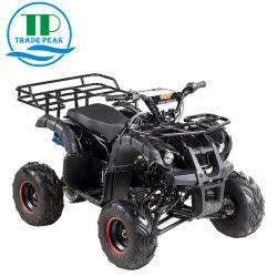 세륨 쿼드를 가진 최신 판매 ATV 차량은 ATV 125cc를 자전거를 탄다