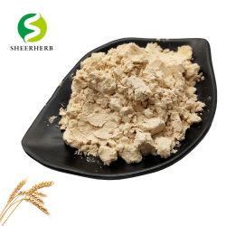 الطعام الدرجة CAS 70084-87-6 عضوي القمح البروتينات استخراج ذربان مطهو مسحوق البروتين