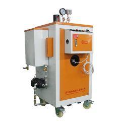 Générateur à turbine à vapeur de 1 MW générateur de vapeur de gaz