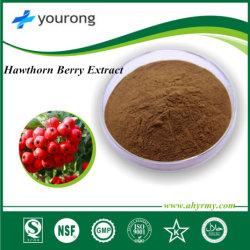 Сертифицирована ISO высокое качество Боярышника экстракт ягод