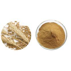 중국은 100% 천연 Barley Malt Powder/Barley Malt Extract를 수출합니다