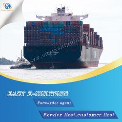 &Profissionais internacionais barato& fiável de ar/Mar da China Transitário a Coreia do Sul