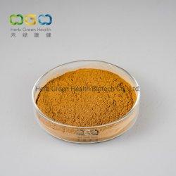 Extracto de plantas naturales de Hierbas Hierbas Diente de León de Mongolia