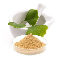 Suplemento Salud Alimentación Botánica Extracto de Ginkgo en polvo Extracto de la hoja de Ginkgo