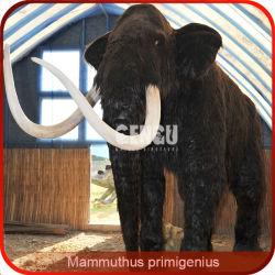 Mammuhus Primigenius نموذج الحيوانات