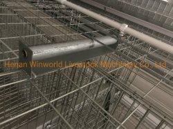 Granja avícola un tipo de escalera de la capa de huevo pollo jaulas equipos con sistema de recolección de huevos