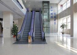 30/35 Graden Commerciële Passagier Lift Escalator Voor Shopping Mall