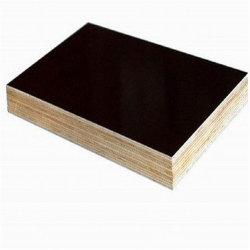 赤茶色のフィルムによって直面される閉める合板の具体的な型枠のパネル13の層の