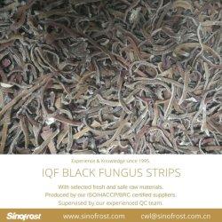 Новую Культуру, Черный IQF грибки полоски, замороженных черный грибки полоски, заморожены, устриц Nameko IQF, Shiitakes IQF, замороженные грибы, Черный IQF грибки порезов