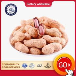 Высокое качество сырья арахис и ядра арахиса в Shell для продажи очень дешевые цены