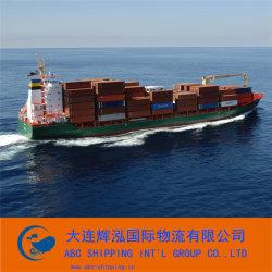 Servizio pericoloso del trasporto del carico da Sea