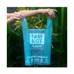 Logo d'impression de l'habillement Shooping biodégradable sac en plastique,