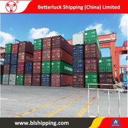 El envío de mercancías de China a Argelia Annaba Forwarder Logística