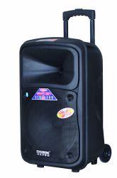 Feiyang/Temeisheng neue Ankunft 12 Zoll Bluetooth beweglicher Lautsprecher mit Licht. Entfernt. Mic F6-12