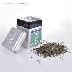 Emballage de cadeau Xinyang Maojian chinois du thé vert