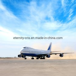 ملابس واقية احترافية وكيل الشحن من شينزين/جوانجزو الصين إلى لوس أنجلوس، نيويورك، الولايات المتحدة الأمريكية