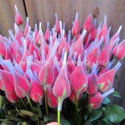 Mayorista de alta calidad de las flores un capullo de rosa Red de protección