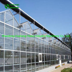 Serra di vetro di agricoltura della Muti-Portata con la coltura idroponica e rifornimenti di sistema del pomodoro del substrato i crescenti