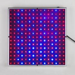 뉴 스퀘어 14W LED가 밝은 풀 스펙트럼 225 블루 야채 상추용 LED 램프