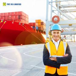 Wettbewerbsfähige Versandkosten Frachtpreis nach Südasien