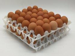 30 فتحة بئر بلاستيكيّة بيضة صينيّة لأنّ بيضة ينقل