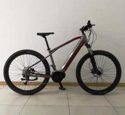 Kundenspezifisches elektrisches Fahrrad der Mountainbike E MTB elektrisches Gebirgsfahrrad-kundengerechtes Bewegungsenergien-36V250W 48V350W