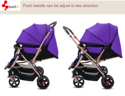 Baby-DoppelSpaziergänger