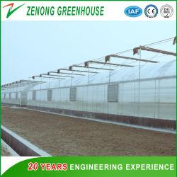 La película el suministro directo de fábrica de efecto invernadero cubiertos con sombreado Net ampliamente utilizados para la agricultura moderna plantar