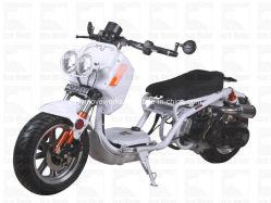 De elektrische Volwassen Autoped van de Motorfiets met Ce