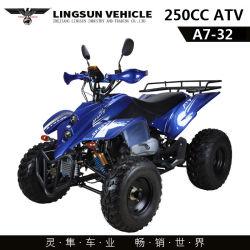 Heißer Verkauf ATV Big Power Fo Erwachsene Off-Road Flash Racing