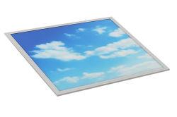 Искусственное небо световой терапии, 2X2', 40Вт Светодиодные индикаторы