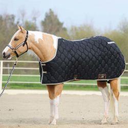 De nieuwe Laag van het Paard van het Ontwerp voor Verkoop