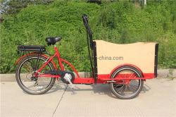 دوّاسة وكهربائيّة شحن درّاجة شحن درّاجة ثلاثية مع [ستيل فرم] [فكتوري بريس]